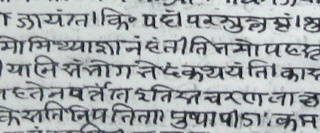 Detail of a leaf of a manuscript that transmits a commentary on the Kirātārjunīya
